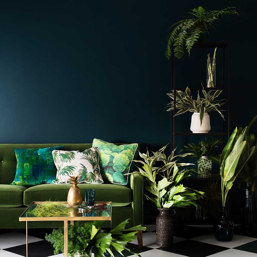 A sofa oasis! With background wall painted using Haymes paint.