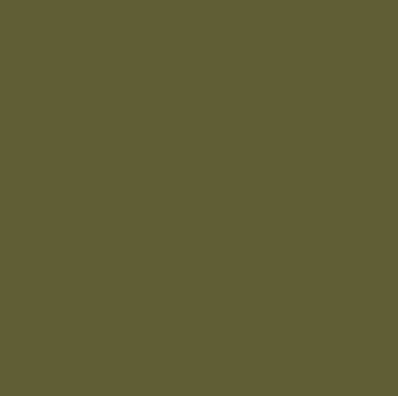 Wild Olive From Fired Earth A Clic Ripe Rich Green Paint